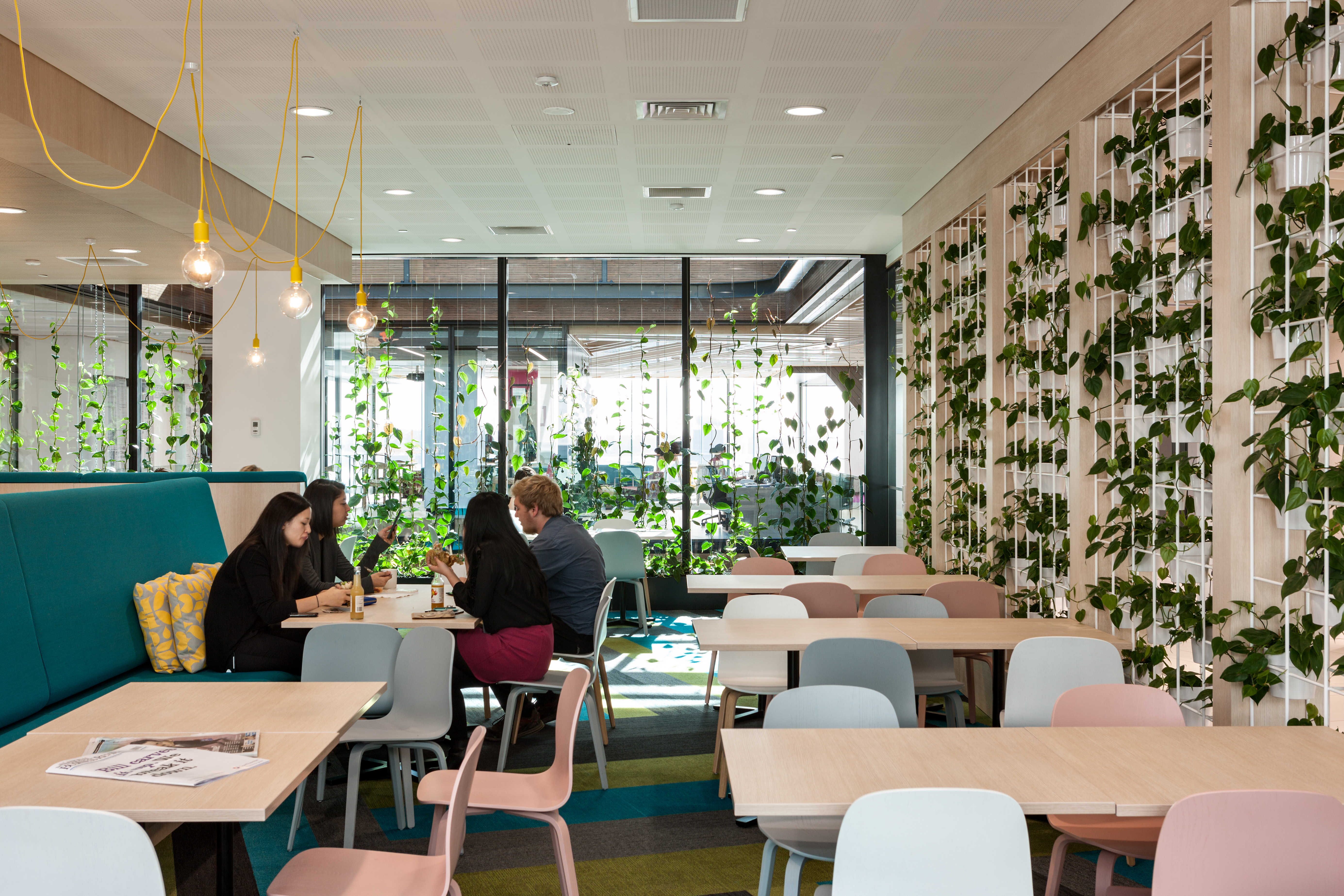 Greenair vitality through plant scapes and living walls nz