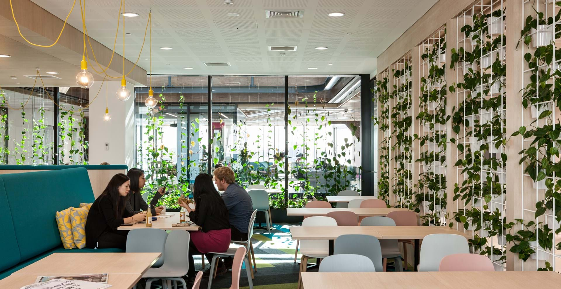 GreenAir | Vitality through plant-scapes and living walls | NZ